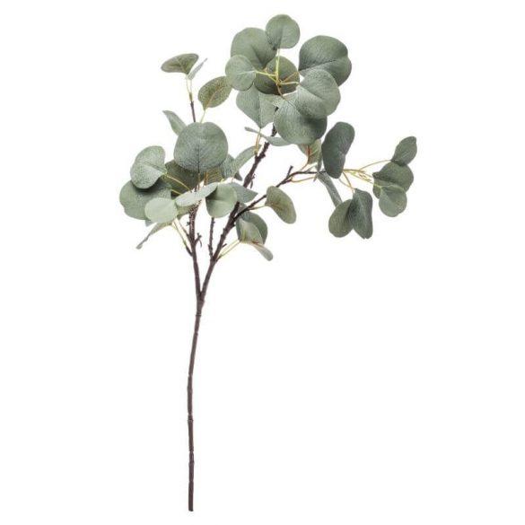 Eukaliptusz ág zöld 78x40cm